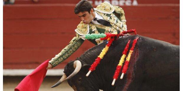 Katalanen für Stierkampf-Verbot