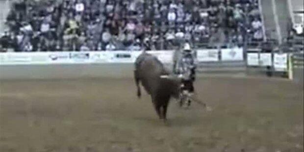 Wild gewordener Stier rast ins Publikum