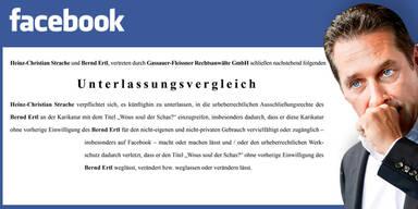 Strache auf Facebook abgestraft