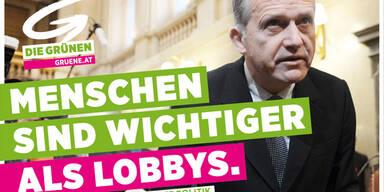 """Grüne """"werben"""" mit Ernst Strasser"""