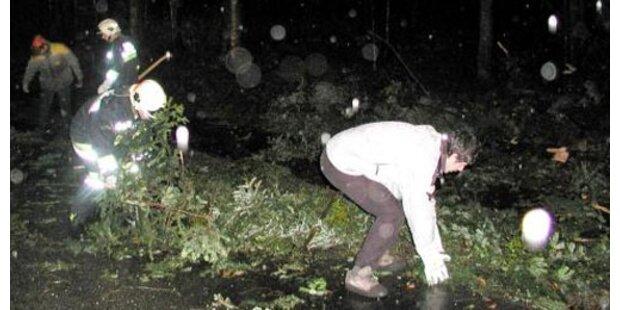 Sturmwarnung für Niederösterreich