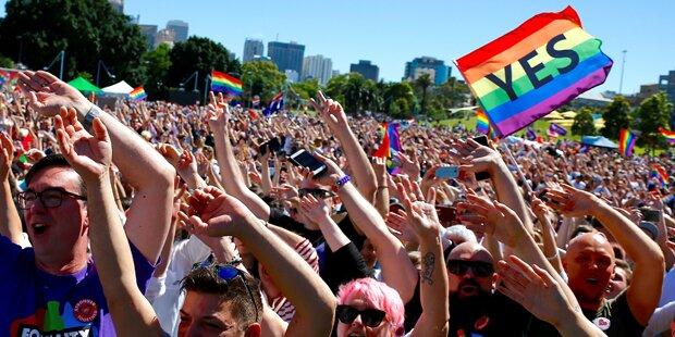 Australien stimmt für die Homo-Ehe