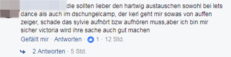 Sylvie Meis Kommentare