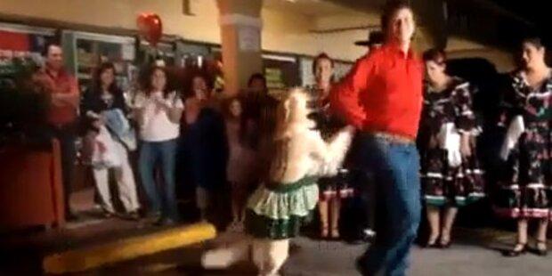 Tanzender Hund wird zum Internet-Hit