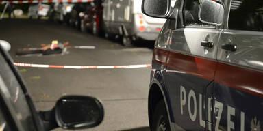 Wien: Taxler erschießt Räuber