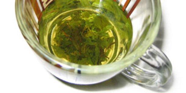 Soja und Tee für die Balance