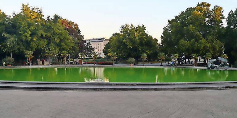 Vandalen färben den Teich am Karlsplatz giftgrün ein
