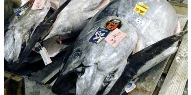 Thunfisch um 122.000 Euro verkauft