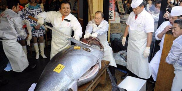 Thunfisch für 566.000 Euro versteigert