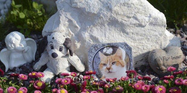 Letzte Ruhestätte für Hund, Katze und Maus