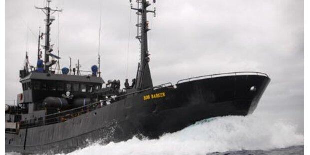 Tierschützer beschießen Walfänger