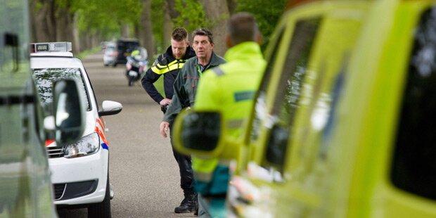 Tiger entlaufen: Großeinsatz in den Niederlanden