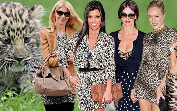 Best Dressed: Stars im Wildkatzen-Look