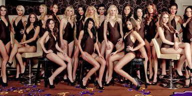 Miss Austria: Alle Kandidatinnen