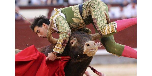 So brutal rächen sich Stiere an ihren Peinigern