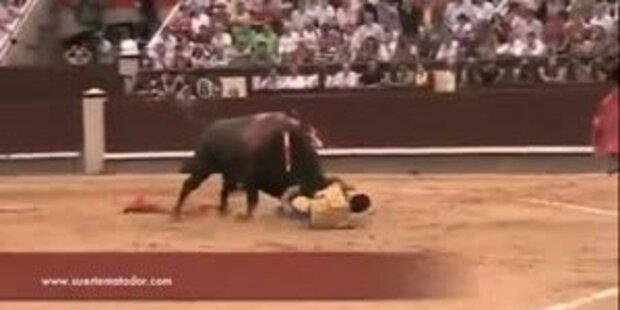 Stier spießt Torero am Oberschenkel auf