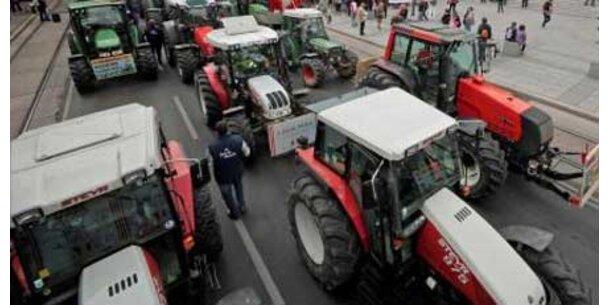 Massive Kürzungen bei Agrar-Milliarden