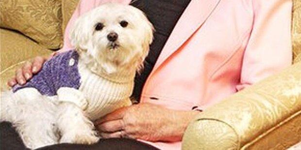 Reichster Hund der Welt gestorben