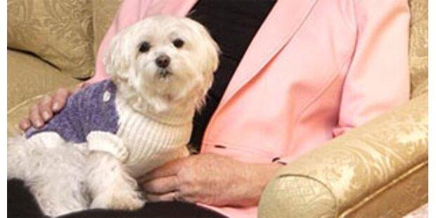 Reichster Hund der Welt enterbt