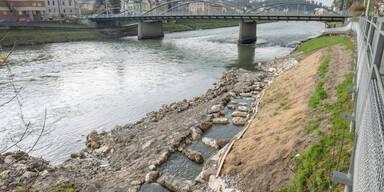 Fischaufstieg von Salzach in den Gersbach