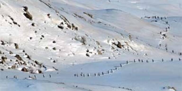Blutige Gefechte zwischen türkischer Armee und PKK