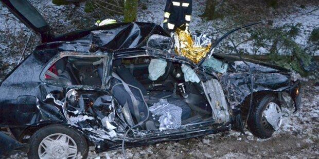 Mit Auto in Krems-Fluss gestürzt
