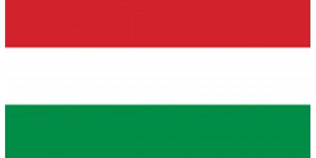 Militär-Jet in Ungarn abgestürzt - 2 Tote