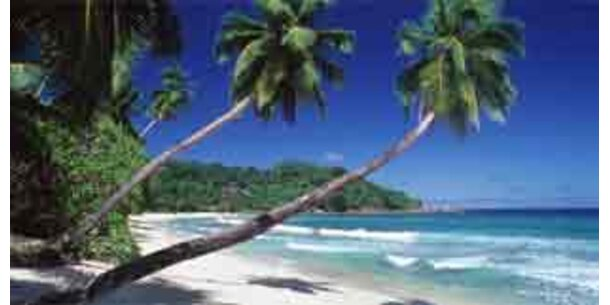 Online-Buchungen für Reisebüros keine Konkurrenz