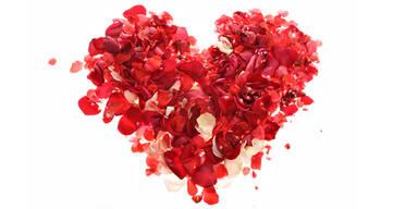Heute Tag der Liebe. Wie manche Frauen Geschenke deuten: