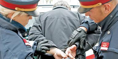 BKA zerschlug drei organisierte Banden