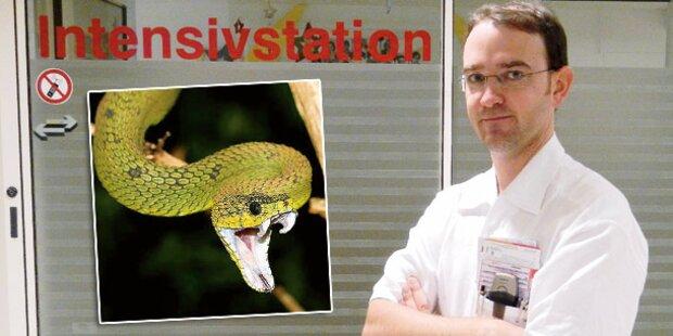 Dieser Arzt rettet Viper-Opfer
