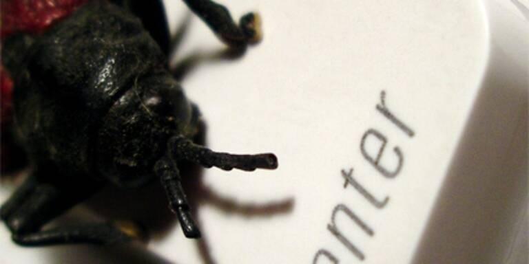 Conficker bleibt der gefährlichste Virus