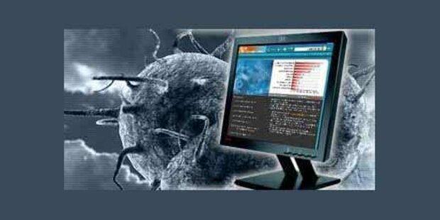 Die gefährlichsten Computer-Viren der Welt