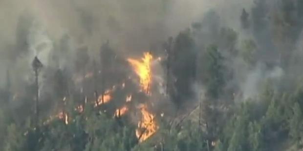 Heftige Buschbrände wüten in 9 US-Staaten