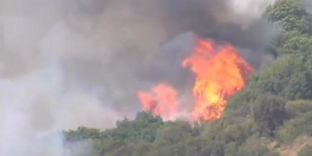 Heftige Waldbrände wüten auf den Kanaren