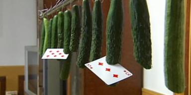Mann schneidet Gemüse mit Spielkarten