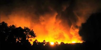 Dutzende Waldbrände: Hitze bedroht Europa