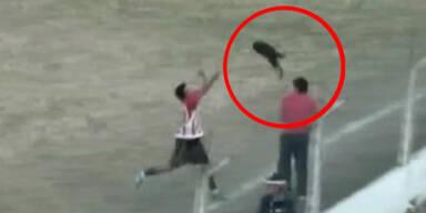 Völlig Irre: Fußballer wirft Hund auf Tribüne
