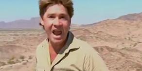 Steve Irwin bekommt Hollywood-Stern