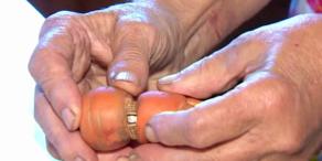 Verlobungsring gefunden: Karotte ist duchgewachsen