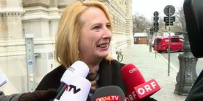 Wiener SPÖ: Debatte zur Obmann-Entscheidung