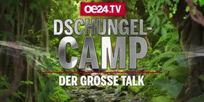 Dschungelcamp: Der Talk zur Ekel-Show