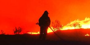 Feuerhölle: Waldbrände wüten in Kalifornien