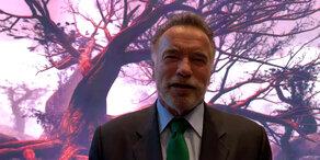 Plastiksackerl-Verbot: Lob von Schwarzenegger