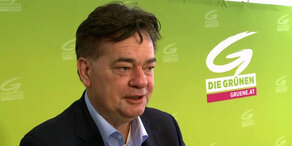 EU-Wahl: Grüner Schwerpunkt Wahlkampf