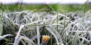 Wettersturz: Jetzt wird es kühl und ungemütlich