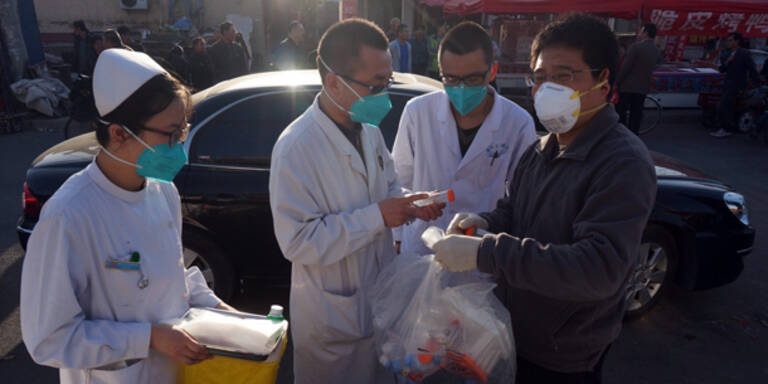 Vogelgrippe: 14 Todesopfer in China