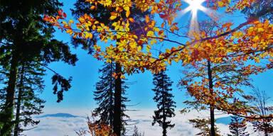 So schön kann der Herbst sein