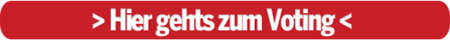 Voting Salzburg
