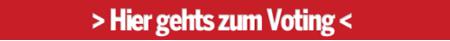 Kopie von Voting Salzburg